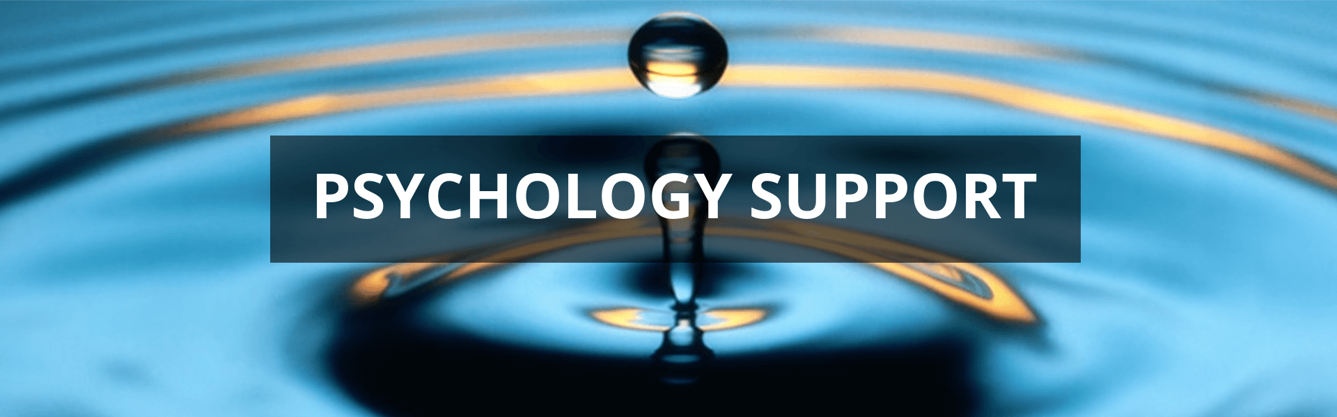 Psychology Support